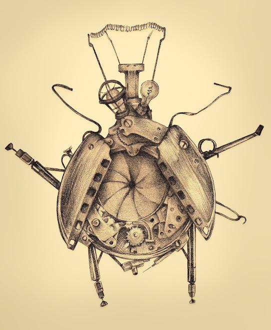 The Shutterbug