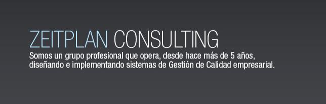 Zeitplan Consulting