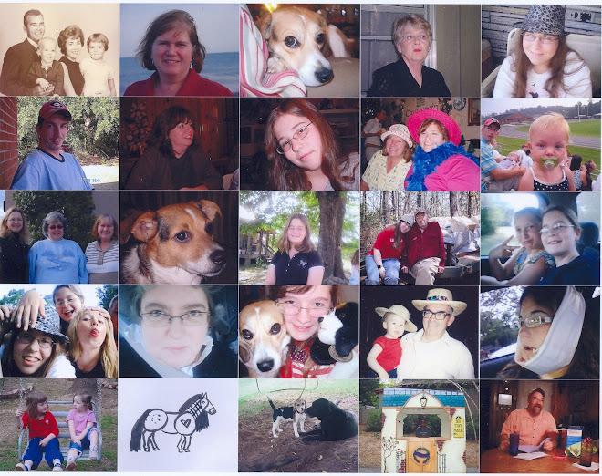 Sheila T's Scrapbook 2009