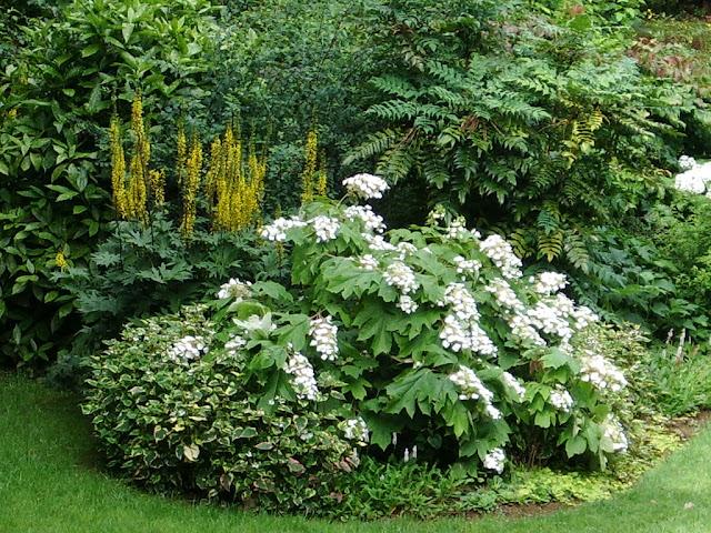 Ledoubsjardindanabel for Le jardin qui bouge