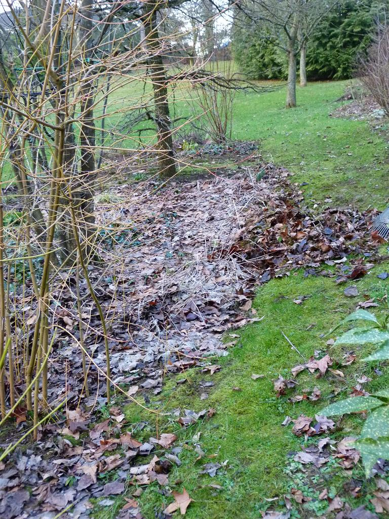 Les pins noirs le nettoyage de printemps a commenc for Nettoyage jardin printemps