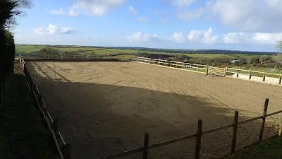 Steppes Farm Horse Riding