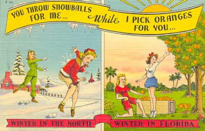 humorous Florida postcard
