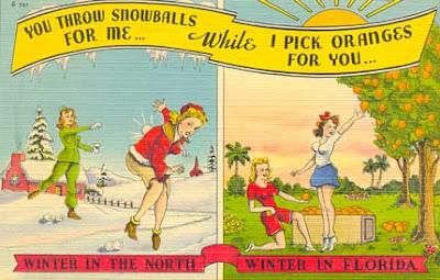 humorous Florida postcard