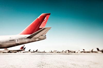 http://3.bp.blogspot.com/_MPlDwV-hJ6I/TUsTJ4Dy8WI/AAAAAAAAFDU/KCHcjm-_S00/s1600/DCD_Desertbirds_03.jpg