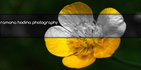 Fotografie,cronicute de eveniment,noutati,,.:)