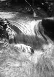 Water Fall Delusions