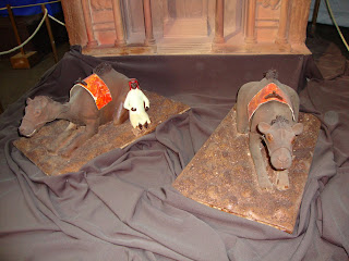 Camelos de Chocolate