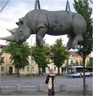 Le Rhinocéros suspendu.Potsdam, Allemagne.