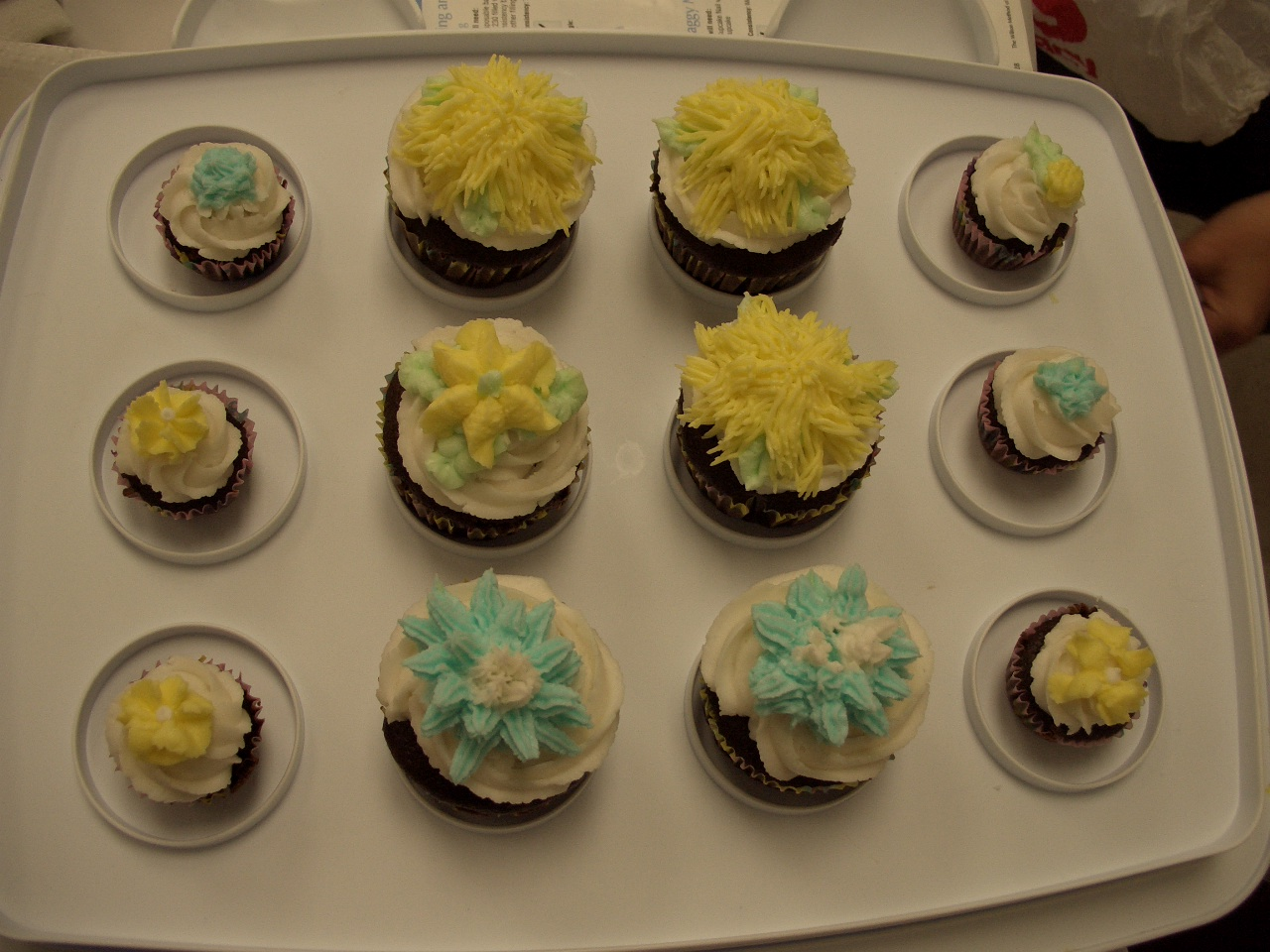 Design Bake Share: Even More from Cake Decorating Basics Class