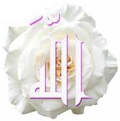 http://3.bp.blogspot.com/_MSLoNUTORXU/SXfh2wVOxjI/AAAAAAAAAEo/U-UC4AWqWJc/S176/allah-rose.jpg