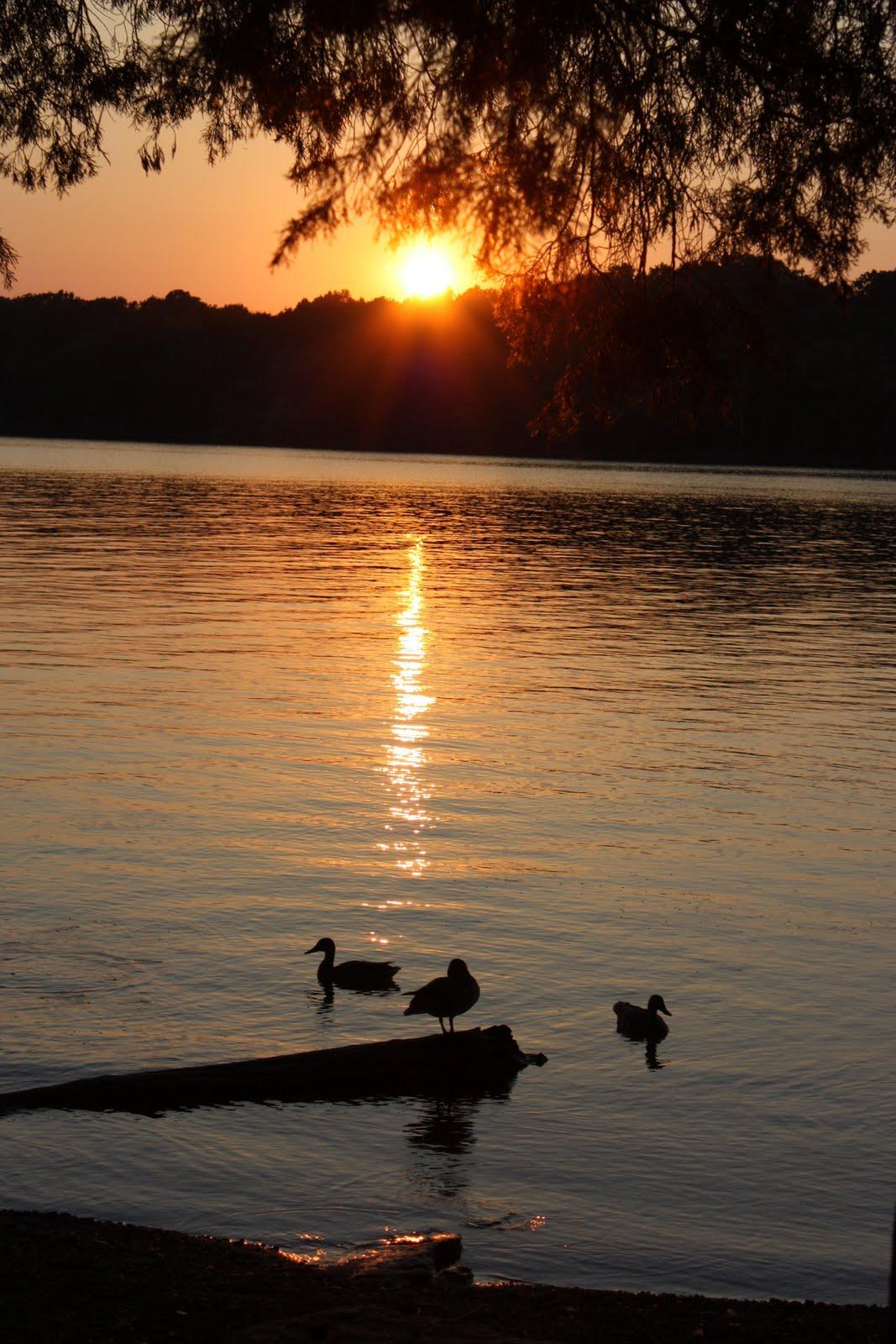 Kohuts Rving Adventures: J. Percy Priest Lake (TN) (July 5 ...