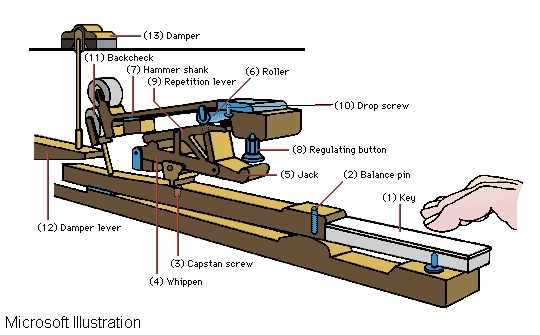 Baby Grand Piano Parts Diagram, Baby, Free Engine Image ...