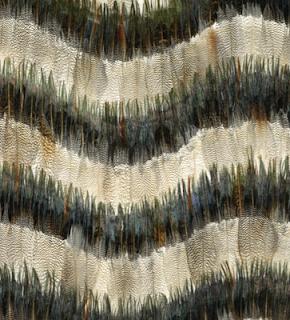 Mm Interior Design Feather Your Nest
