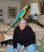 Mary Ellen, the ME part of CrazyBird and ME, along with Cyrus, the crazy bird of CrazyBird and ME