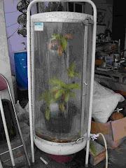 Mesin perawat tanaman