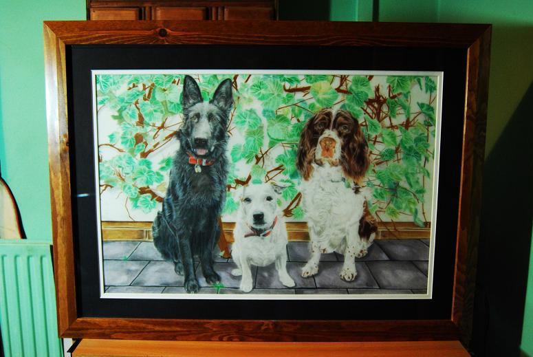 [dog portraits.JPG]
