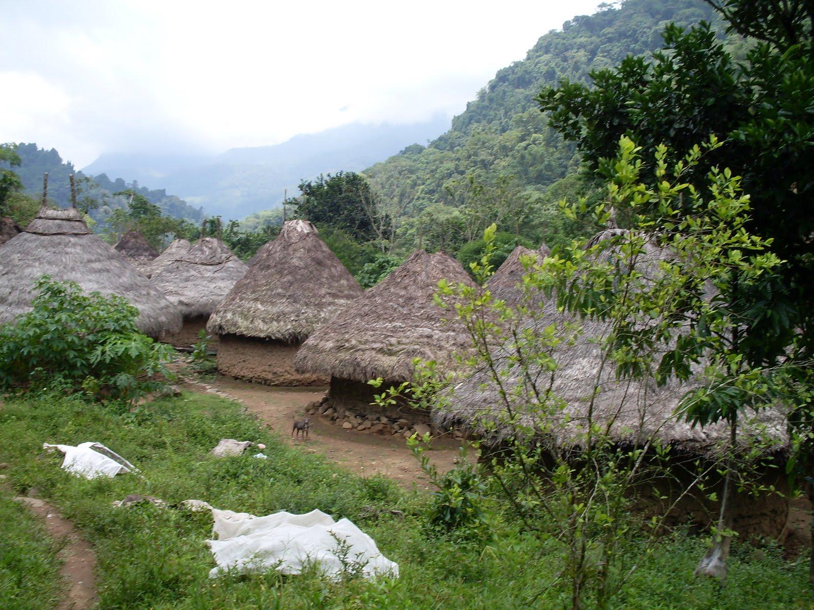 Un village Kogui