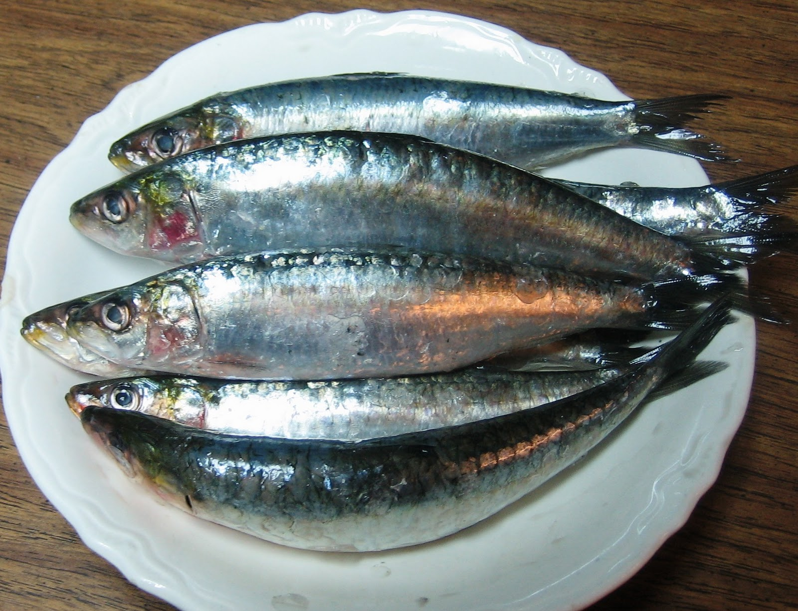 La casa e il giardino sardines why they are good for you for Is fish good for you