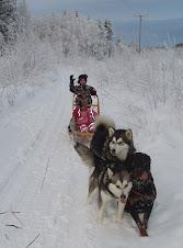 Klicka på bilden så kommer ni till bloggen om hundarna/kenneln min