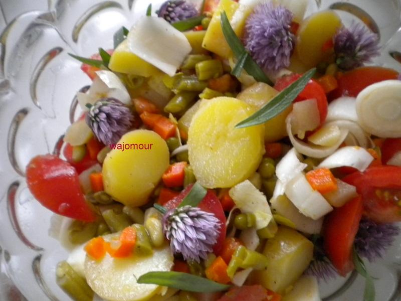 Le chaudron magique de jojo salade des lutins malins for Ver mangeur de salade