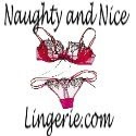 Host a Naughty and Nice Lingerie Girl's Night in Party!!!