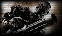 Terminator Decolar