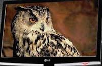 Smart Monitor LG