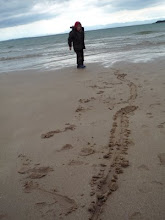 Fin at Big Sands Gairloch