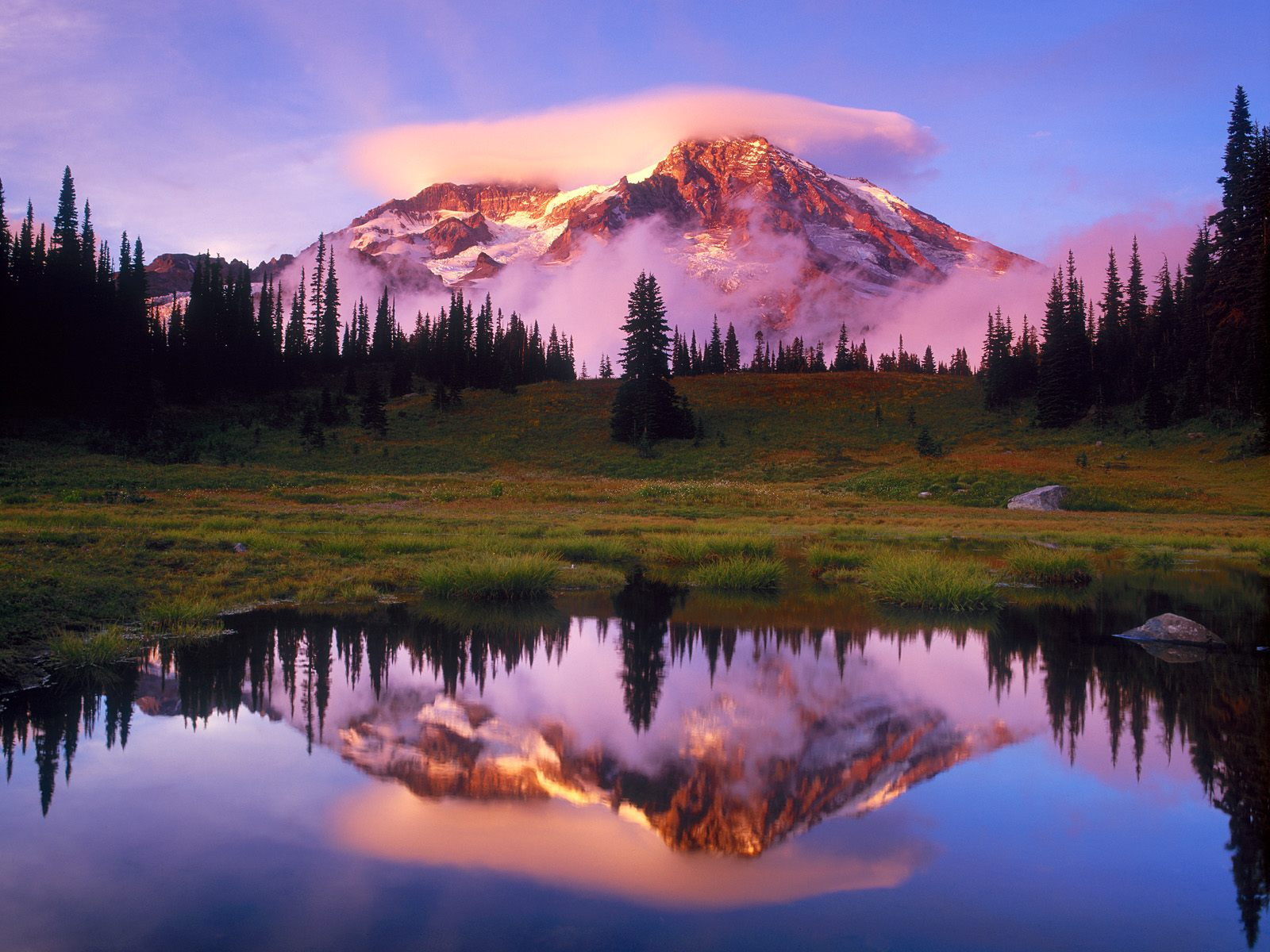 Mt. Rainier in all of its splendor! Simple and beautiful, full of ...