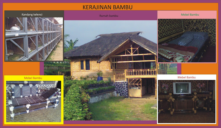 Pengrajin bambu dan Villa Bambu