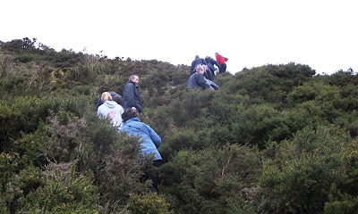 Friends climbing a gorse-covered hill, seen from below