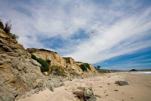 [Beach-8976.jpg]
