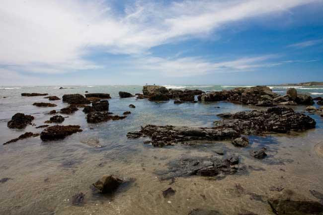 [Beach-8965.jpg]