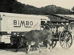 external image bimbo-754204.bmp
