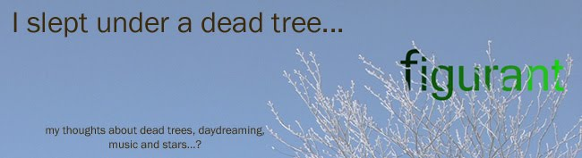 I Slept Under A Dead Tree