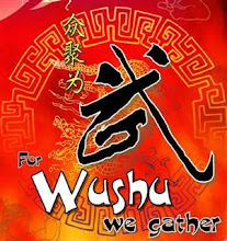 MMU Cyber Wushu