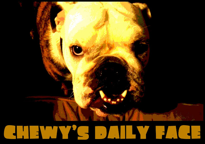 Chewy's Daily Face