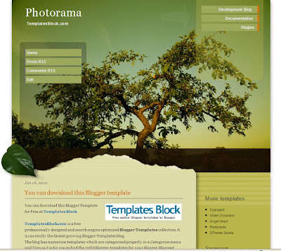 Photorama Blog Theme