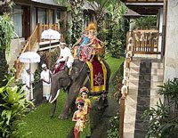 elephant wedding with bali holidays wedding