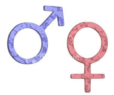 10 Sustantivos De Genero Masculino Y Femenino