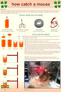 humane mousetrap