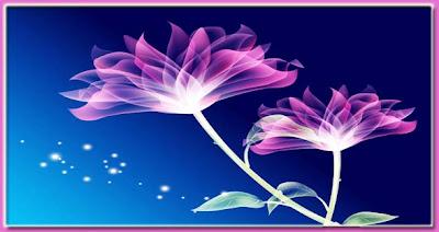 Flores para ti.