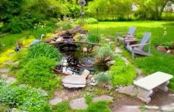 Visit Tom 'n Liz Live Garden Cams