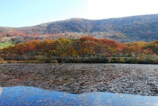 原池から吾妻山を見上げる写真