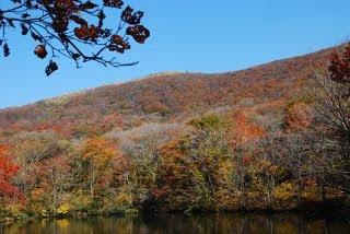 ヒョウタン池から吾妻山を見上げた写真