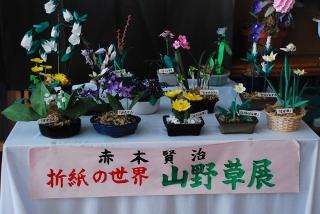 赤木賢治、折紙の世界「山野草展」の写真