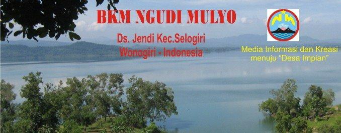 BKM NGUDI MULYO