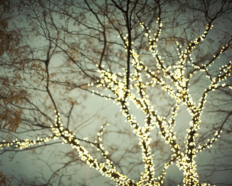 Just Another Girl's Blog: Outdoor Wednesday and the Magic of Christmas Lights