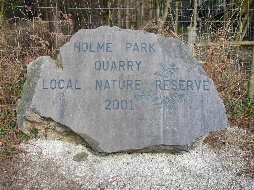 Holme Park NR Clawthorpe Fell